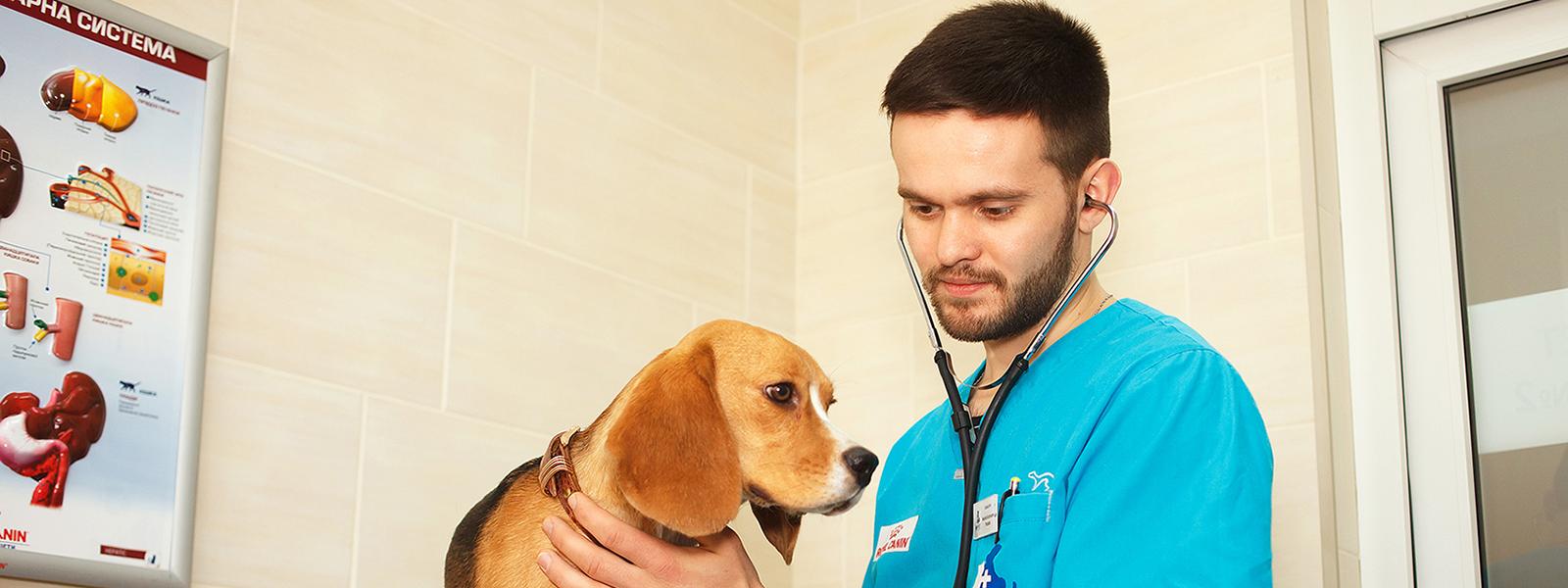 ветеринарный центр в москве