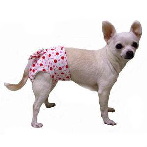Стерилизация маленьких собак фото